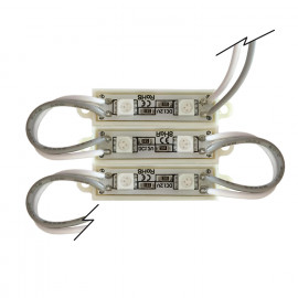PACK 20 MÓDULOS 2 LED 0.48W DC 12V BLANCO